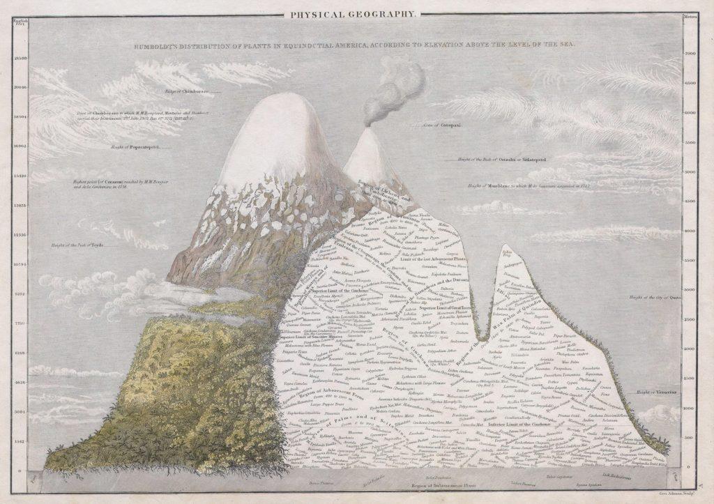 Bericht Alexander Humboldts aus Essai sur la géographie des plantes, Paris 1805.
